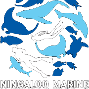 Ningaloo Marine Interactions Team